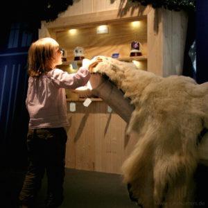 Jahreszeiten Ausstellung Winter Eisbär