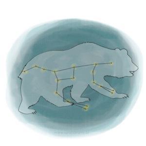 Bären Booklet Illustration Großer Bär Sarah Deters