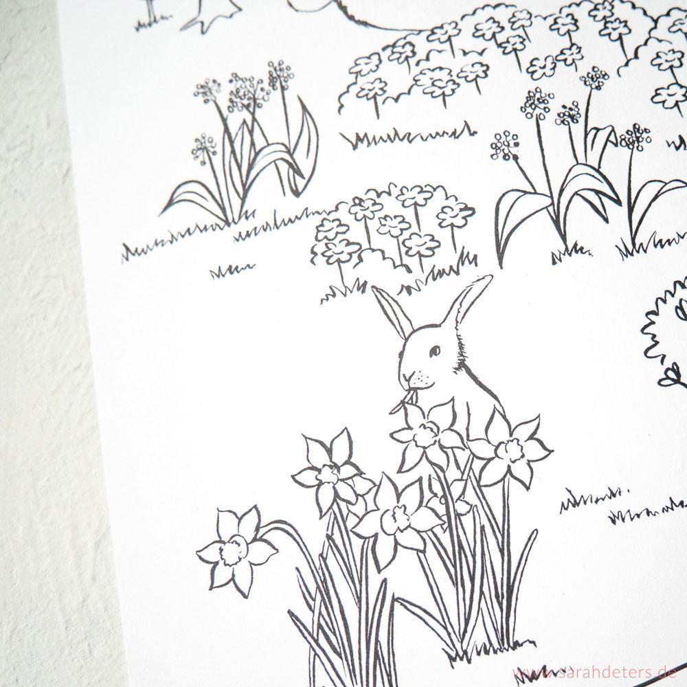Malbuch Bärenwald Frühling Illustration Sarah Deters