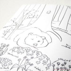 Malbuch Bär im Frühling Illustration Sarah Deters
