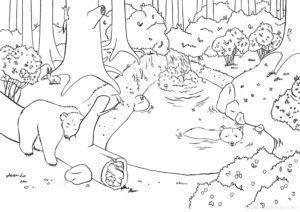 Malbuch Bär im Sommer Illustration Sarah Deters