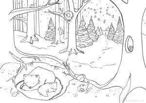 Malbuch Bär im Winter Illustration Sarah Deters